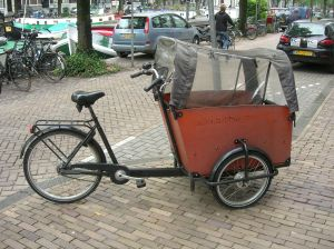 delux kiddie transport
