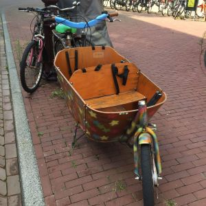 double kiddie transport